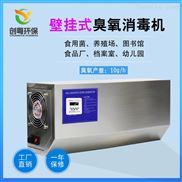 广州创粤10g食品厂壁挂式臭氧发生器
