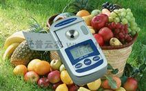 TD-92數顯糖度儀_手持式