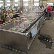 厂家直供油菜清洗机 净菜加工设备