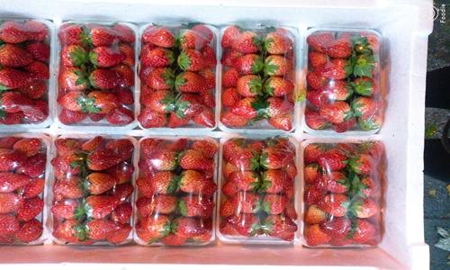 """草莓成最""""脏""""水果 农残恐慌合理吗?"""