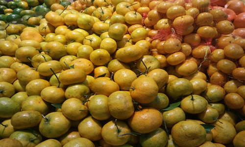 衢州:向深加工要效益 柑橘关键技术发挥作用大