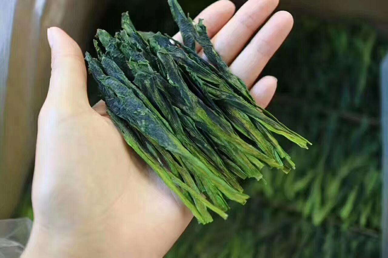 茶叶生产提质增效 创新发展
