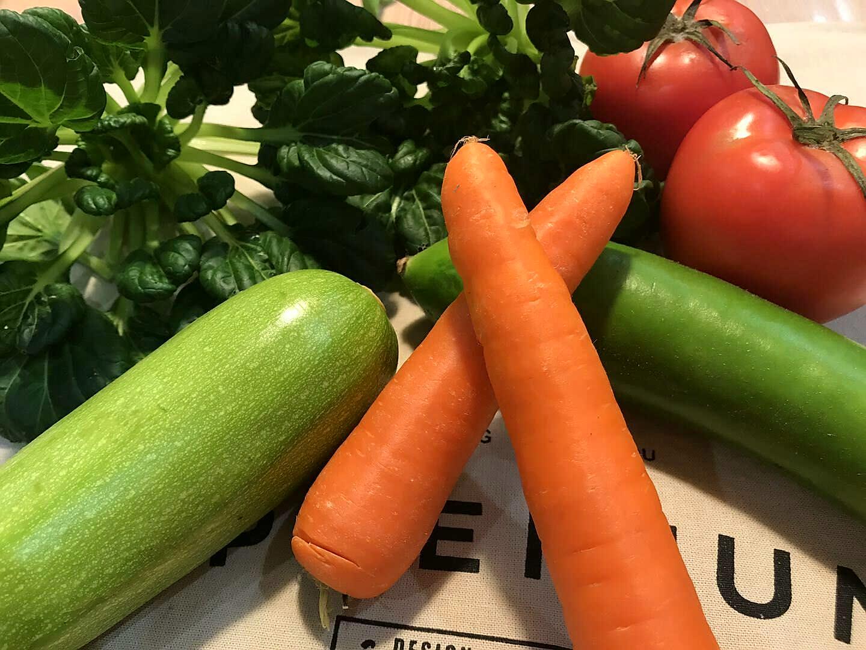 湖北省推进蔬菜机械化生产成绩显著
