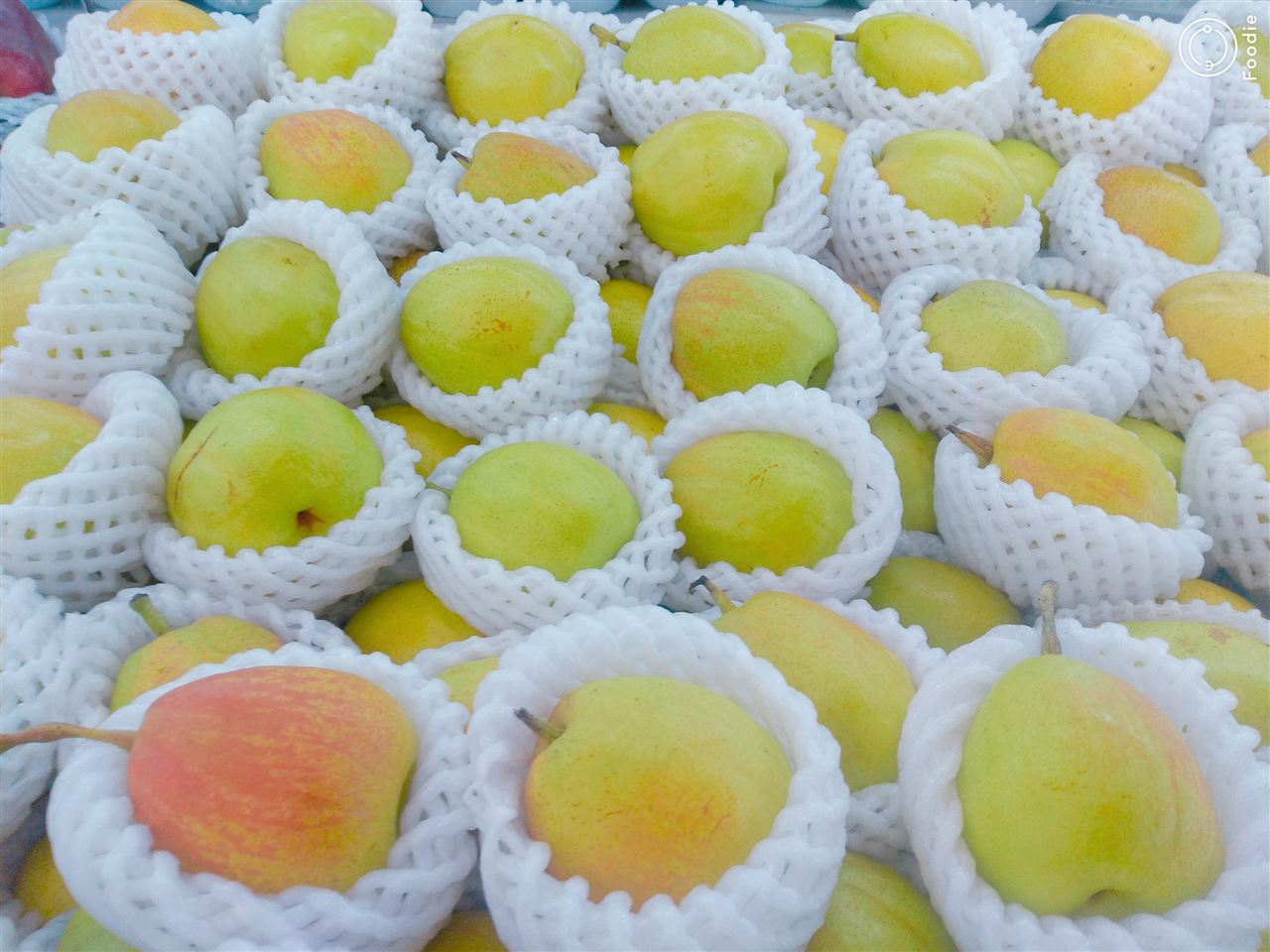 刺梨成富民大产业 喷雾干燥设备提升果粉品质