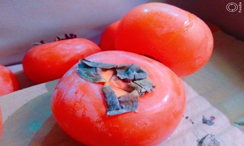 去皮机提效又保品质 提高柿子综合利用率