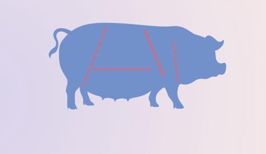 非洲豬瘟不僅出現在生豬上 檢測設備需幫助嚴格把關