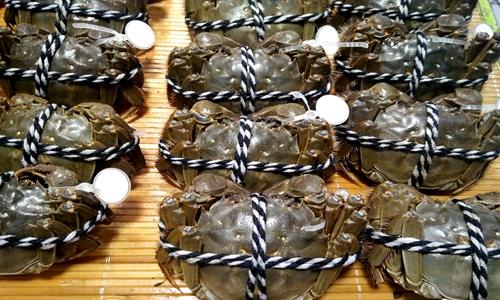 大闸蟹制成即想到做到食产品价值提高 去壳机让生产效率大提升