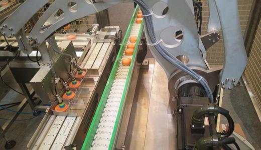 新年立刻就要开工 食品食品包装机械新闻机器消费宁静题目不行轻忽