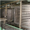 LXSD-1000双螺旋单品速冻机