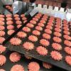 双斗曲奇糕点生产线 双色曲奇饼干成型机